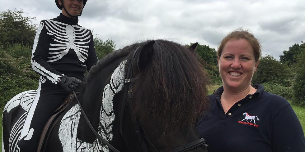 Icelandic Horses Inside Out for FEIF Sport Judges