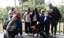 Visita a Anfibia