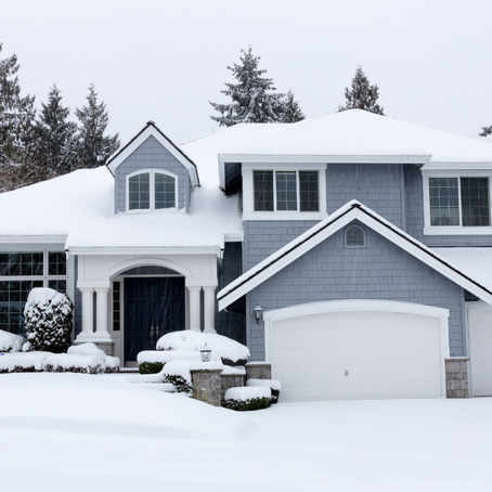 Why You Need Rodent Control in the Winter!