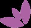 Les_CHAI_de_la_COUR_pétales_violet_3.pn