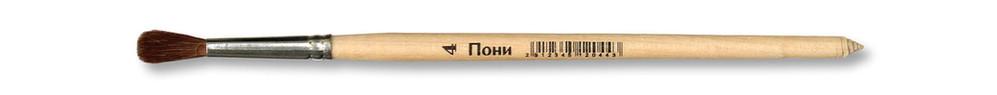 Школяр пони круглаяПони 4.jpg