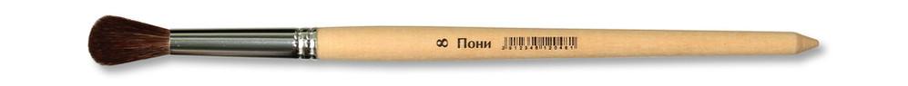 Школяр пони круглаяПони 8.jpg