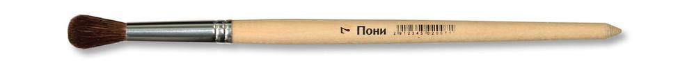 Школяр пони круглаяПони 7.jpg