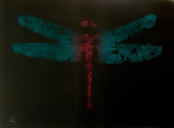 Qianzhi Zeng / Dragonfly #1 / 67 x 56 cm / litografi / kr 5.800