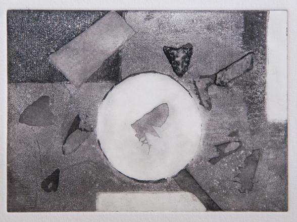 Rosanna Vio / Insekter / 12 x 17 cm / akvatint / Kr 1900