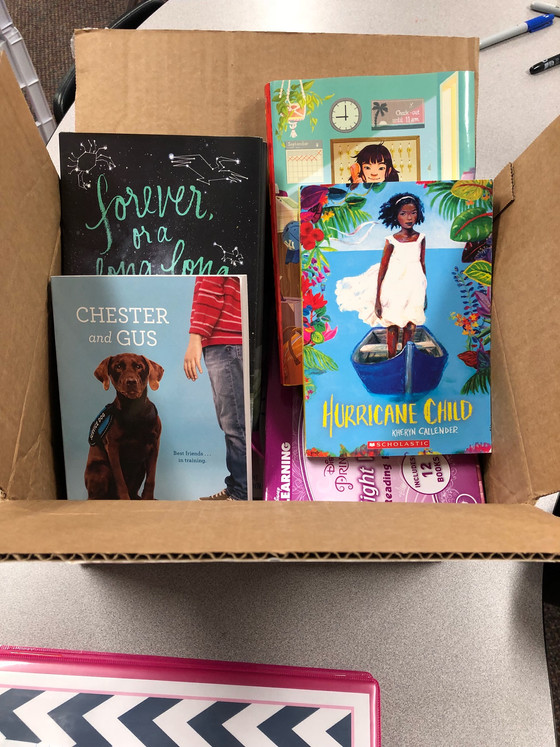 What's in My Scholastic Book Box? March 2018 Edition