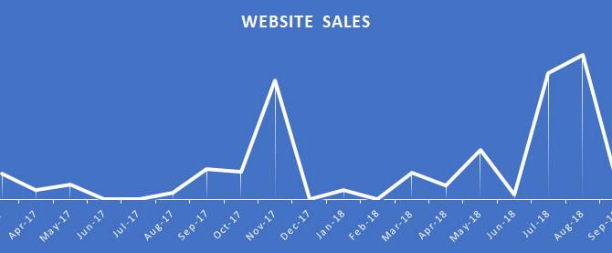 Shop Talk: 20 Months of Website Sales