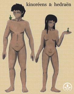 humains et hedraën