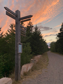 Bike Path Trail Markers