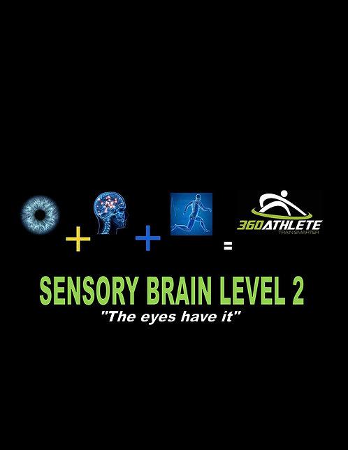Sensory Brain Level 2 - KIT