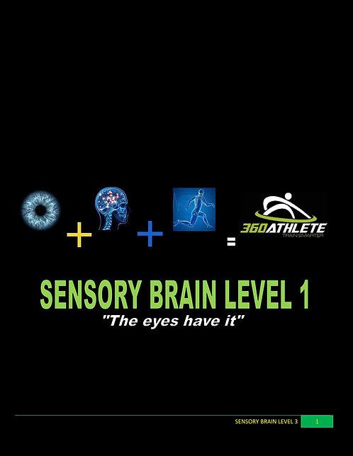 Sensory Brain Level 1 - TEAM