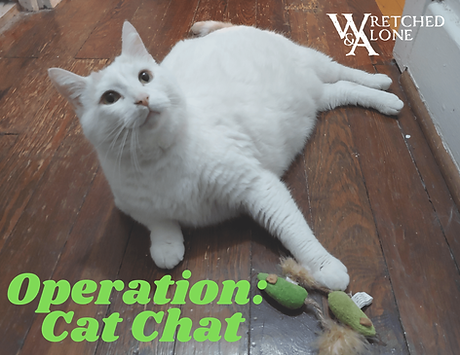 Operation: Cat Chat, a Wretched & Alone Game featuring a white cat pointing at two green catnip mice