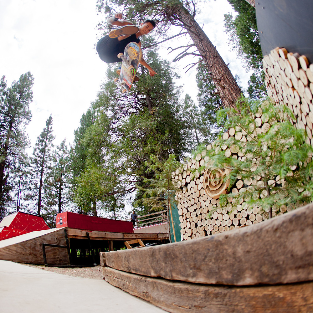 Nyjah Huston, Backside Flip, element camp 2014.jpg