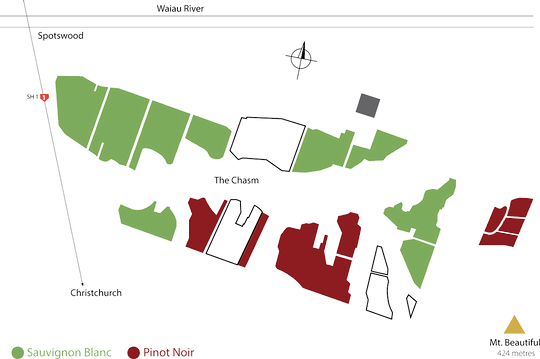 Sister's-Ridge-Vineyard-Map-For-Web.png