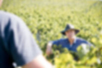 NZ Harvest Low Resolution Card 3-234.jpg