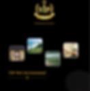 VIP Entourage Golf Brochure.png