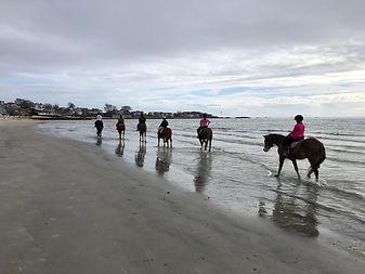 Mary Fischer Beach Bums.jpg