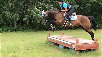 Olivia Adams Jumping.PNG