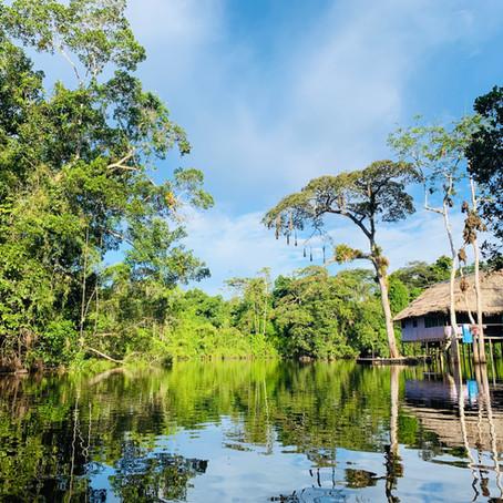 Excursion en bateau à Iquitos - Tout ce que vous devez savoir