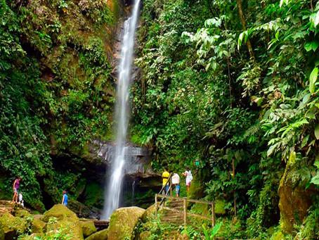 Cataratas más cercanas a Tarapoto
