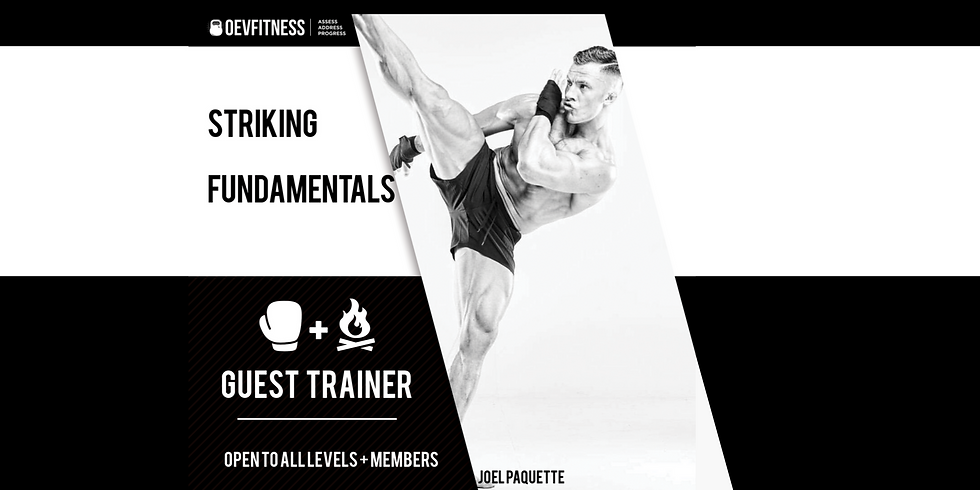 Striking Fundamentals with Joel Paquette