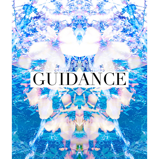 guidance.PNG.png
