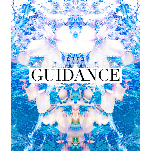 Guidance Package