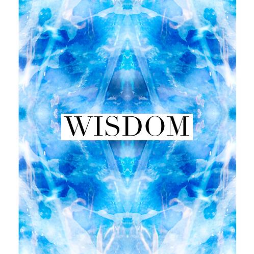 Wisdom Package
