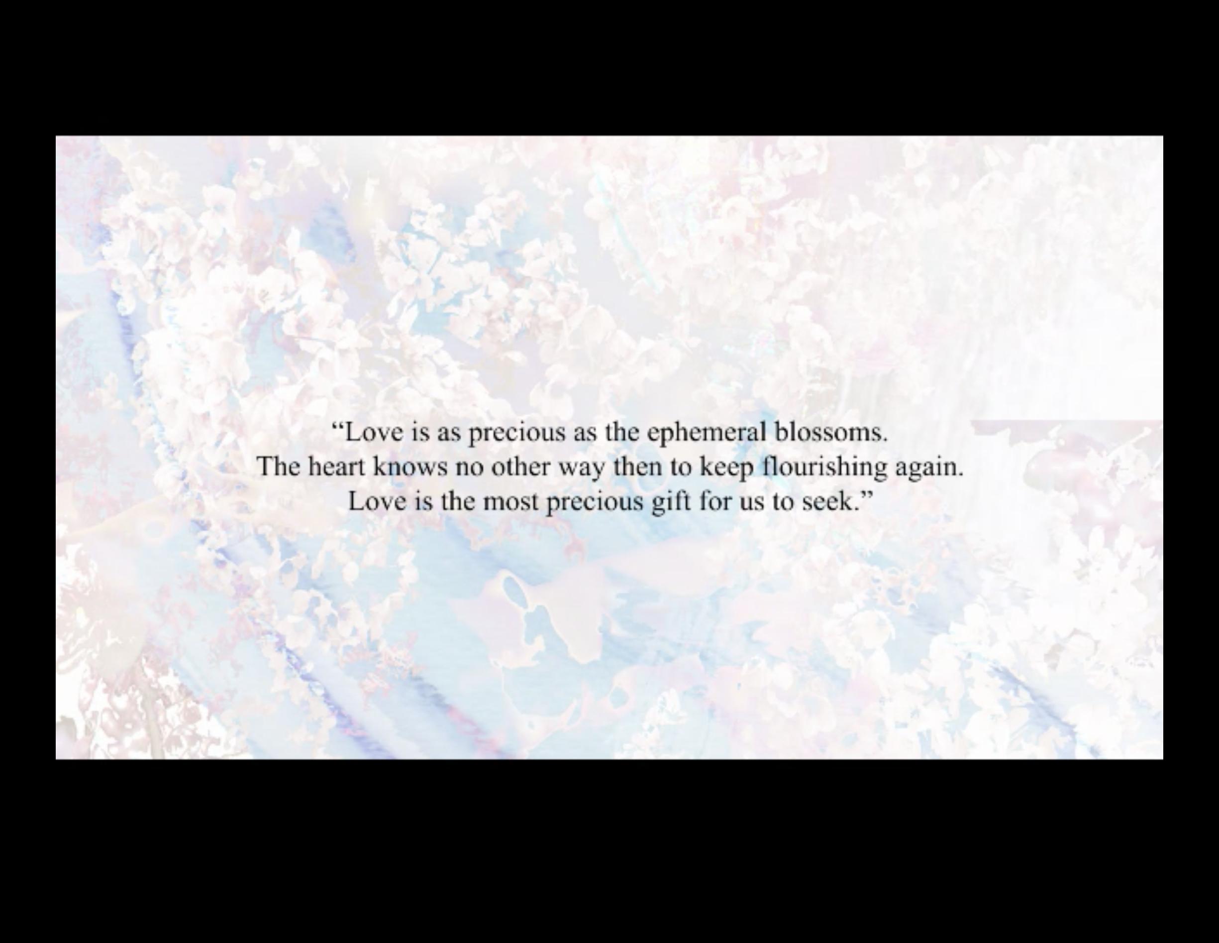 Love & Harmony