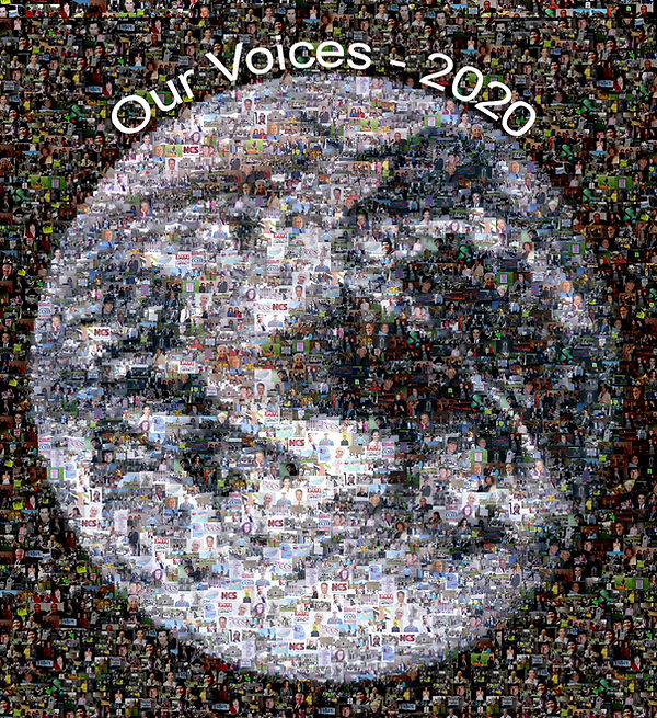 Our-Voices-earth-Mosaic.png
