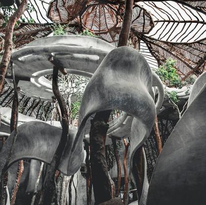 Cultural complex in the jungle