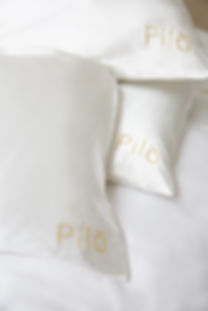 PILO0408C.jpg