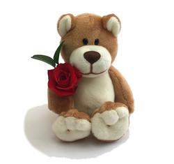 My Teddy - red