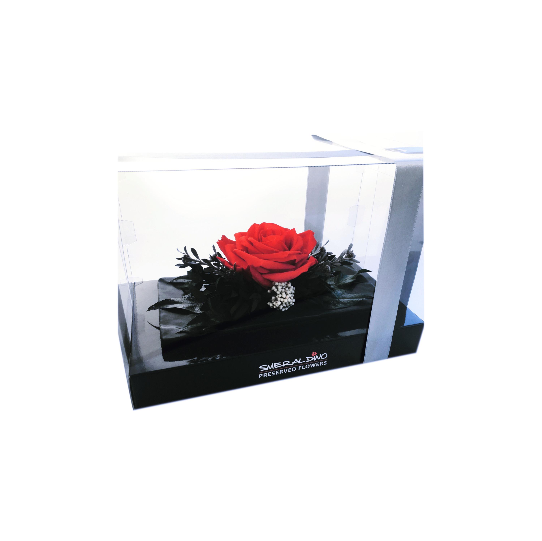 Veronica red - box
