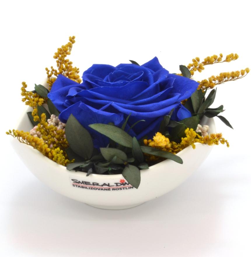 Elaine royal blue
