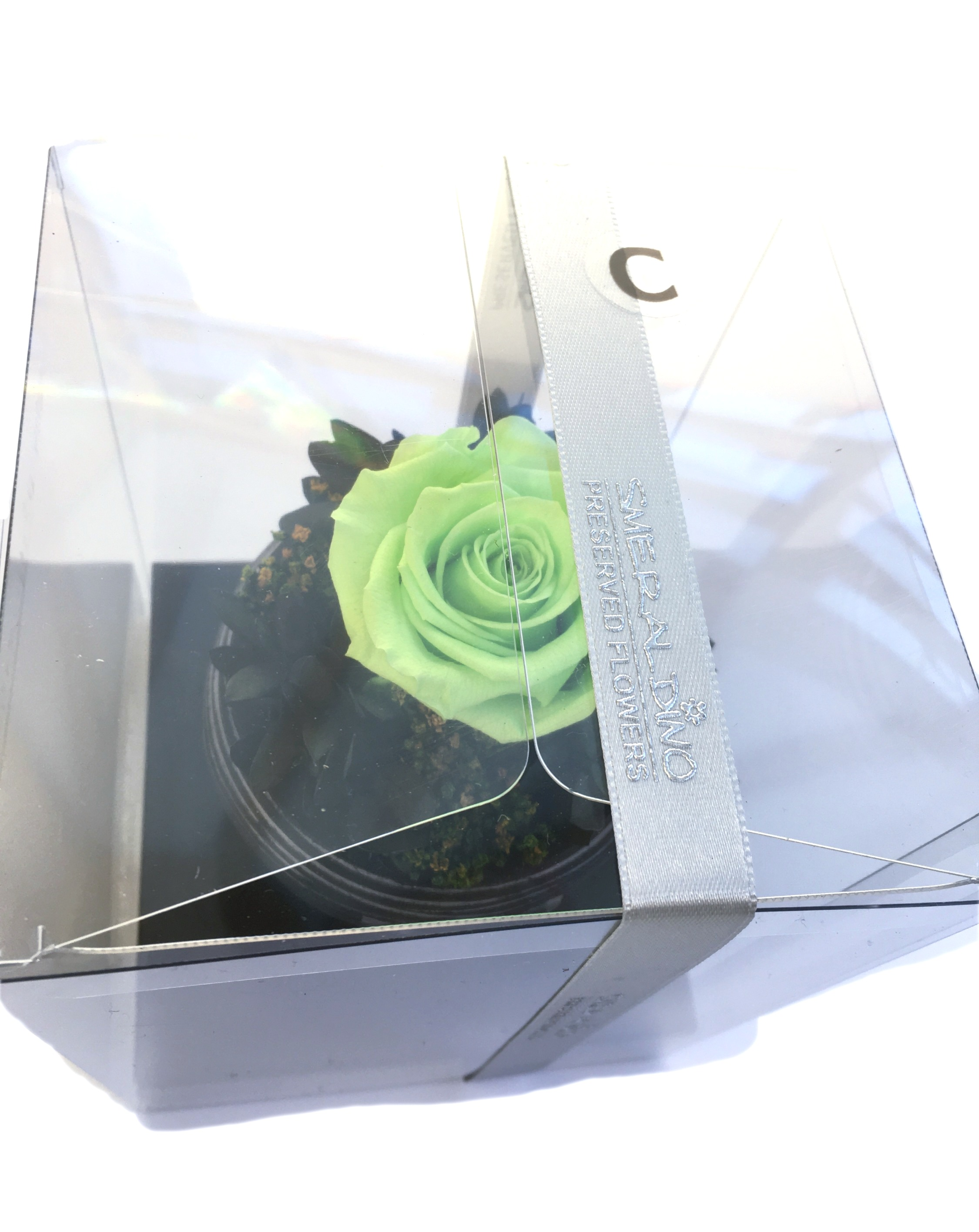 Charlotte box