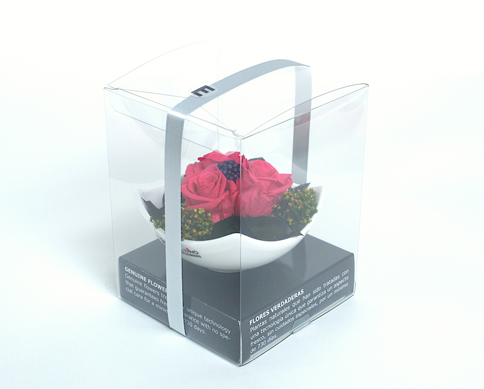 Esther box