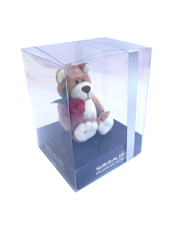 My Teddy box