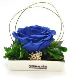 Diana royal blue