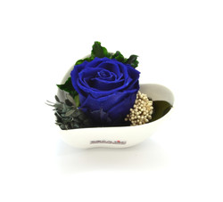Carmen royal blue