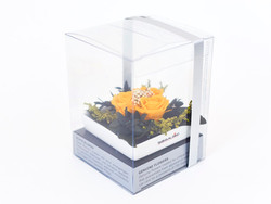 Emma box