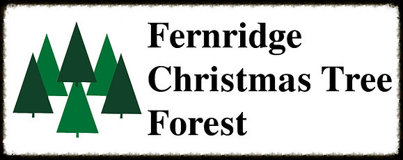 Fernridge Christmas Tree Forest