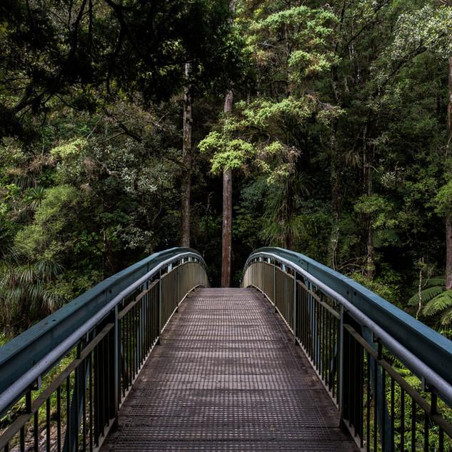 Zofnass Barclay Family Nature Play Trail