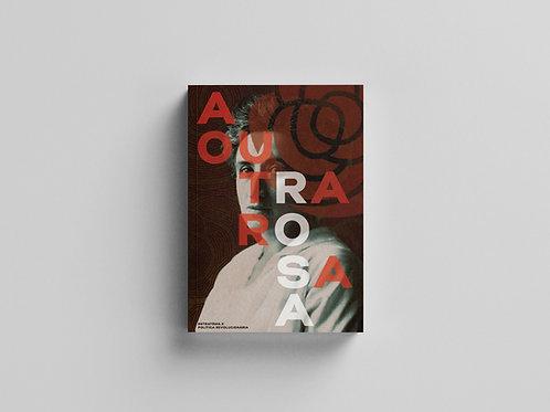 A outra Rosa: estratégia e política revolucionária
