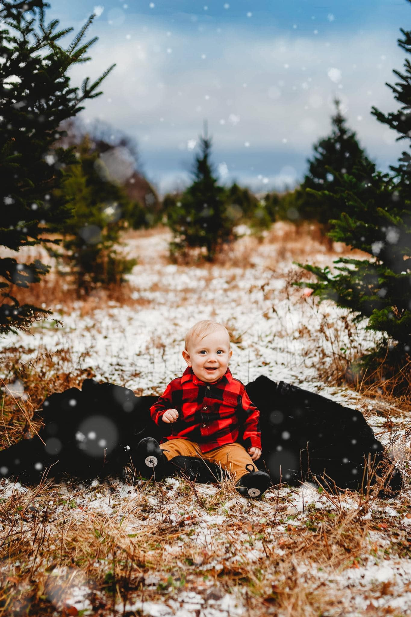 OUTDOOR CHRISTMAS SESSIONS