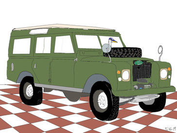 Green Brown Check Rover