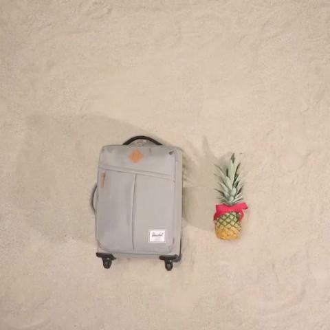 Luggage_099