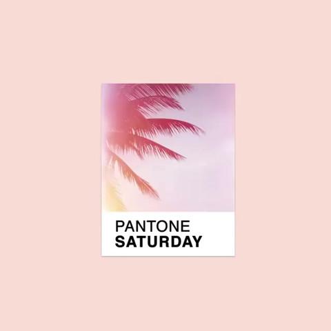 pantone_19513347_204135216779398_1918815