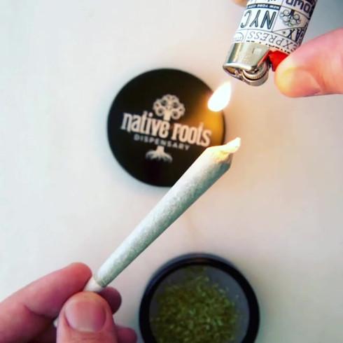 Cannabis_013 (_nativerootsdispo).mp4