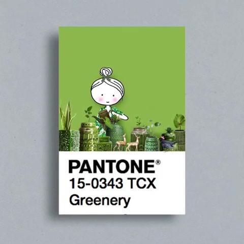 pantone_19724678_323139061457541_3233140